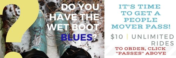 Promo Graphic - Wet Boot Blues.jpg